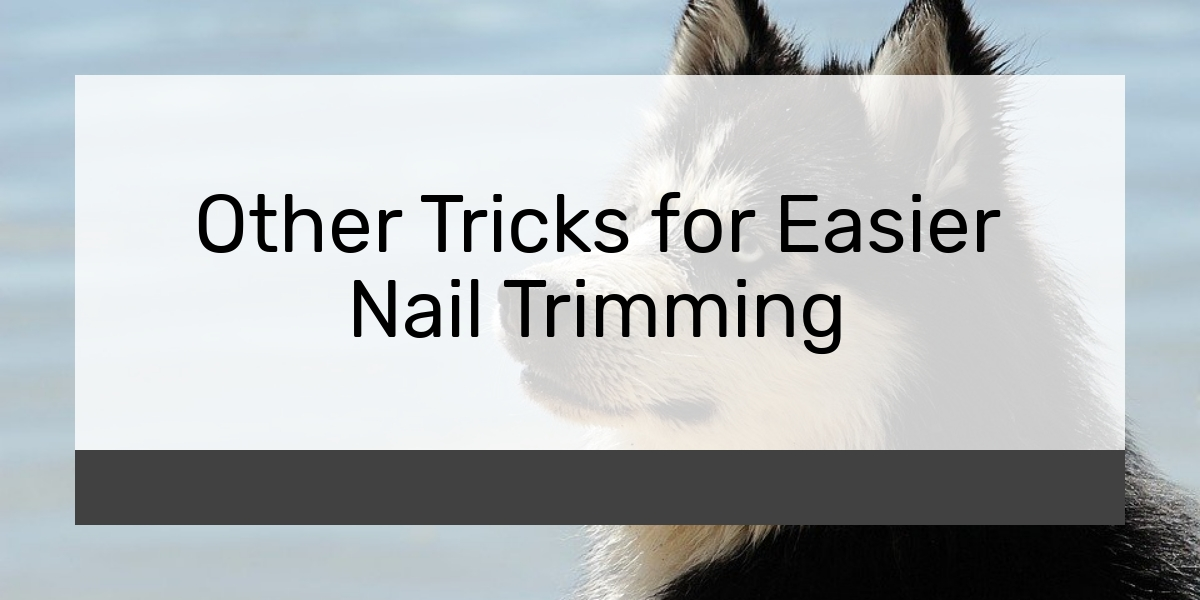 Other Tricks for Easier Nail Trimming