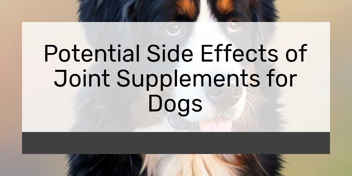 Potential Side Effects of Joint Supplements for Dogs