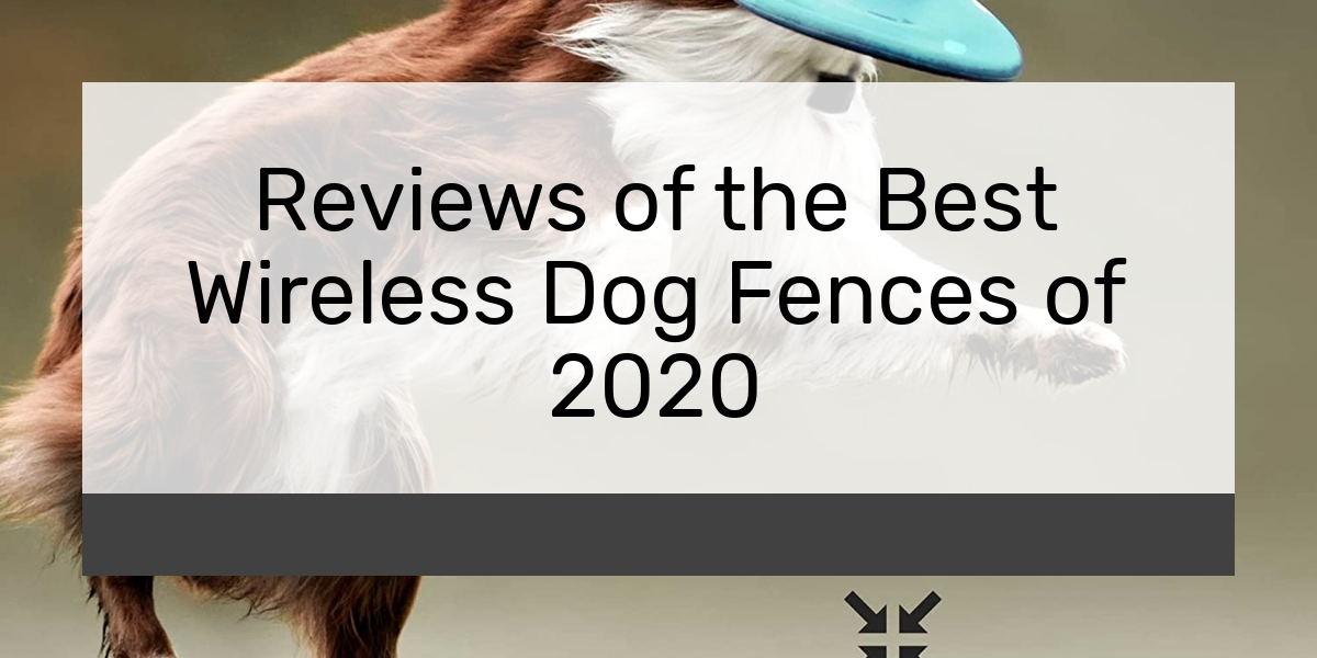 Reviews of the Best Wireless Dog Fences of 2020