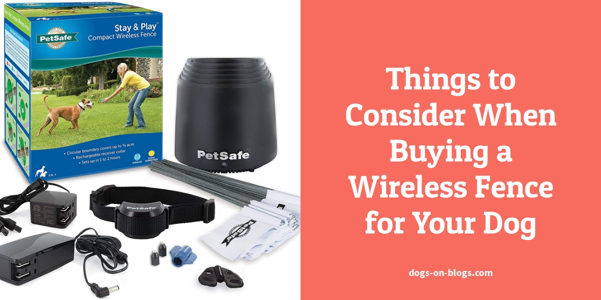 Things to Consider When Buying a Wireless Fence for Your Dog