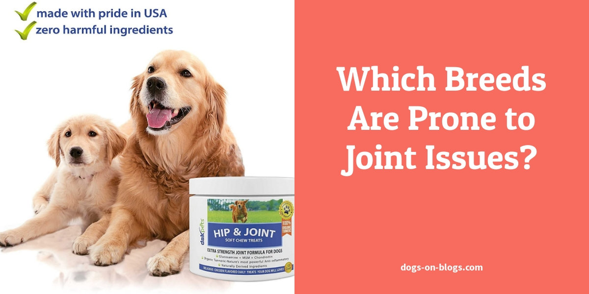 Which Breeds Are Prone to Joint Issues?
