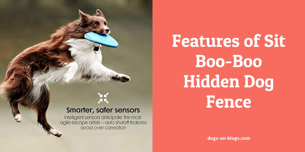 Features of Sit Boo-Boo Hidden Dog Fence