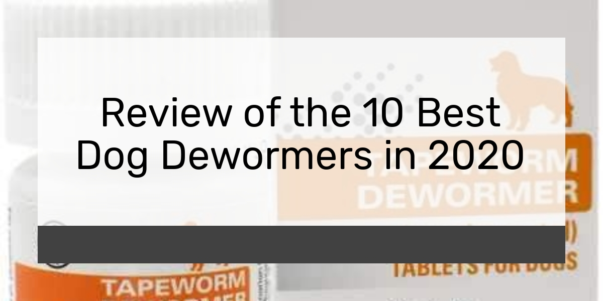 Review of the 10 Best Dog Dewormers in 2020