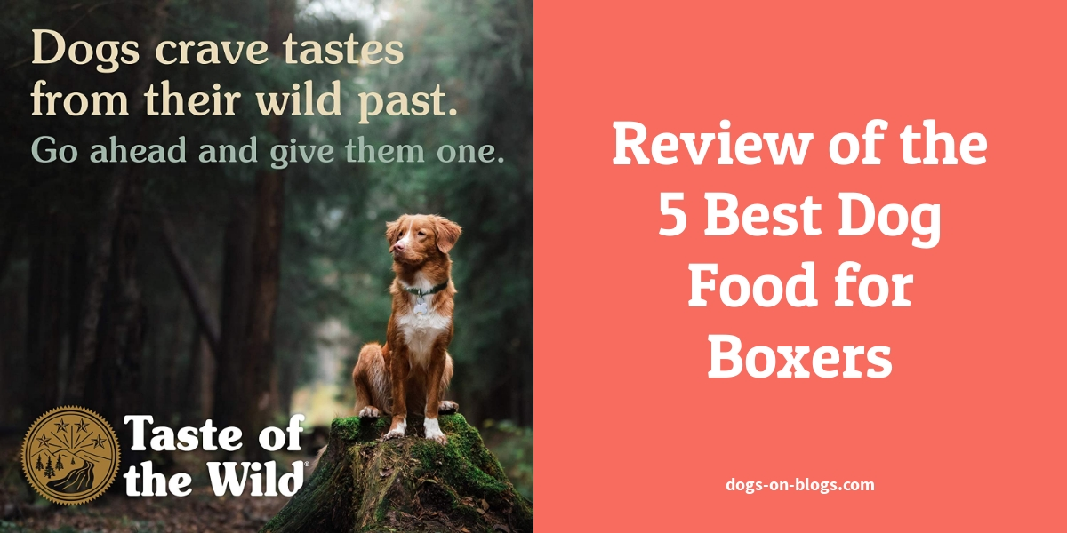 Review of the 5 Best Dog Food for Boxers