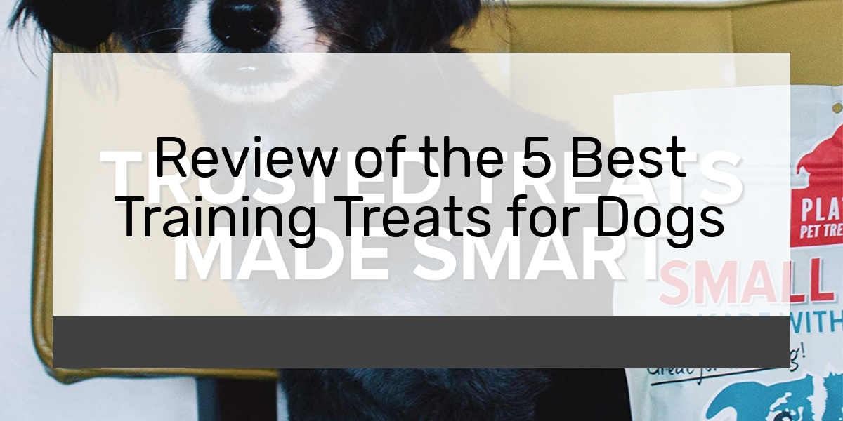 Review of the 5 Best Training Treats for Dogs