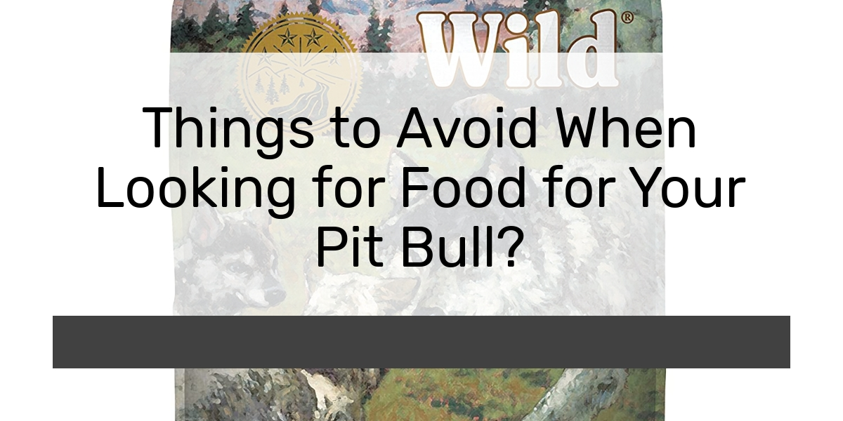 Things to Avoid When Looking for Food for Your Pit Bull?