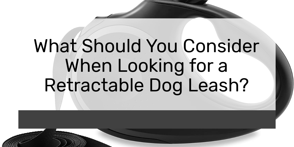 What Should You Consider When Looking for a Retractable Dog Leash?